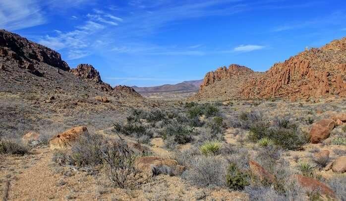 Big-Bend-National-Park2