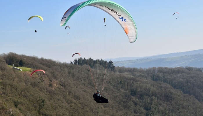 Paragliding Sails Of Paragliders Paraglider