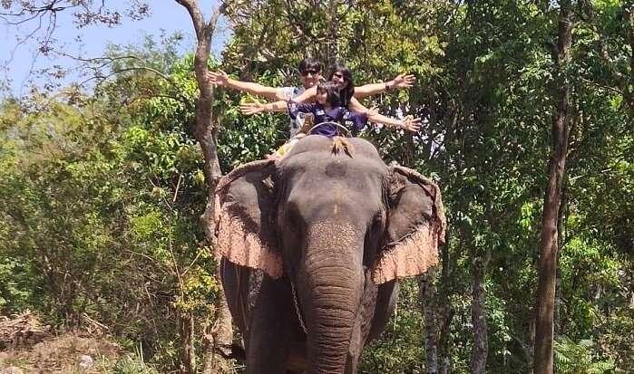 enjoyed a lot on the elephant ride