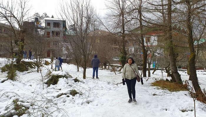 breathtaking views of the snow-laden Kullu Valley