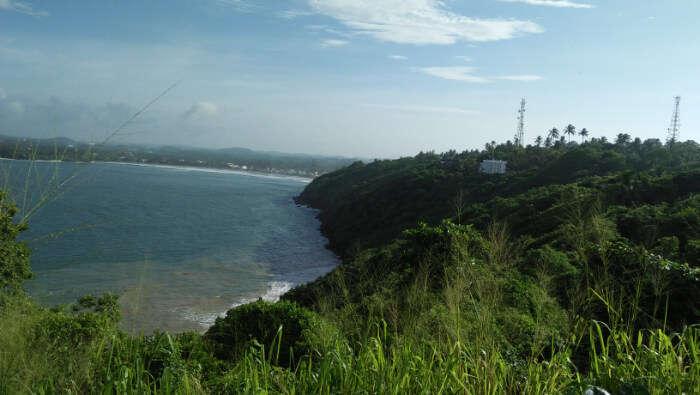 Jungle-Beach