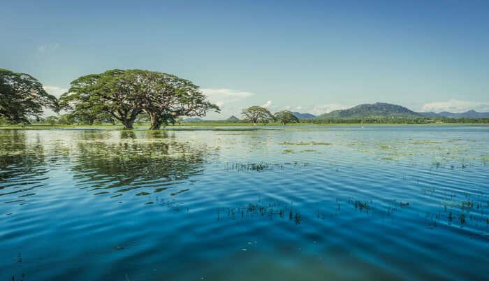 Lakes In Sri Lanka