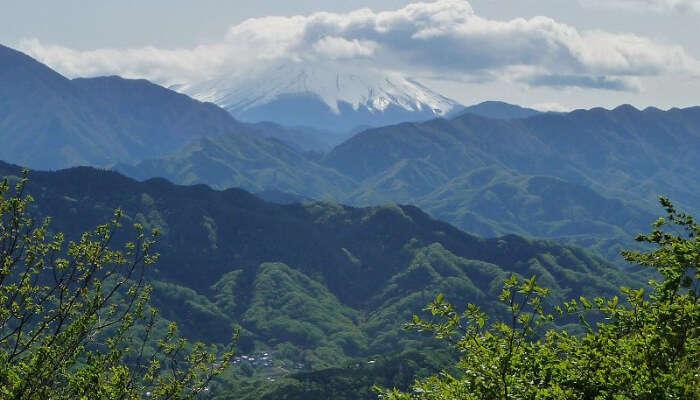 Meiji No Mori Takao Quasi National Park