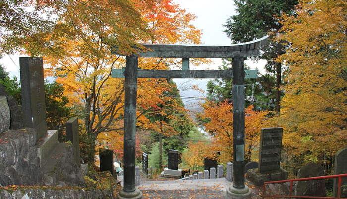Mt Mitake