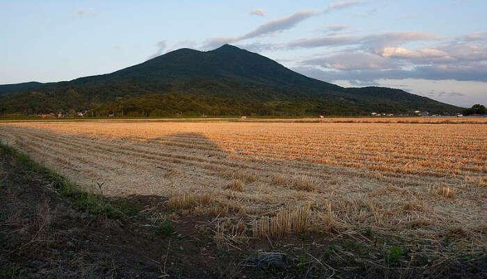 Mt Tsukuba