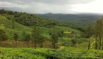 Parks In Wayanad cover