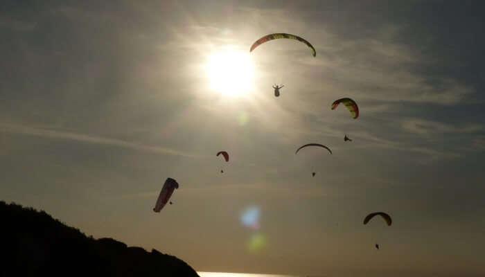 Beach Sky Paragliding Wing Ocean Side Sun