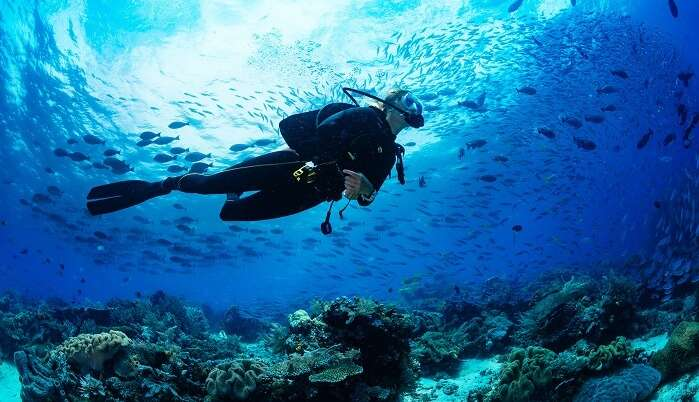 Scuba Diving In Jamaica