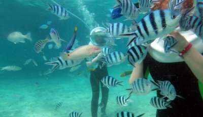 Underwater Sea Walk In Mauritius