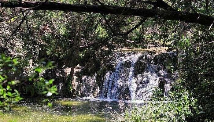 Wild_Basin_Wilderness_Preserve_