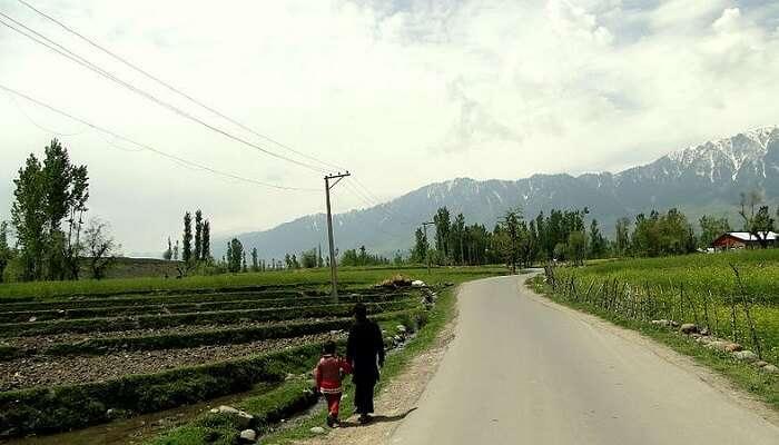 road in pahalgam
