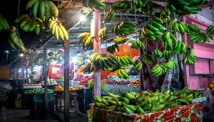 Andaman and Nicobar lifestyle