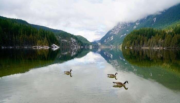 Buntzen_Lake