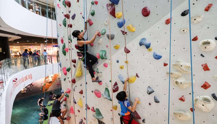Rock Climbing In Singapore