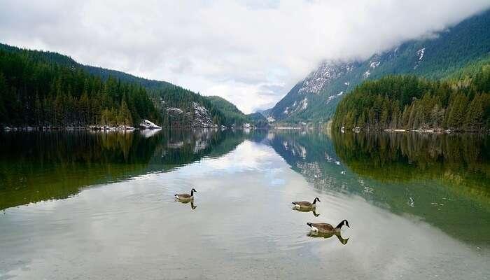 Diez Vistas In Vancouver