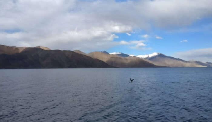 Ladakh's natural beauty