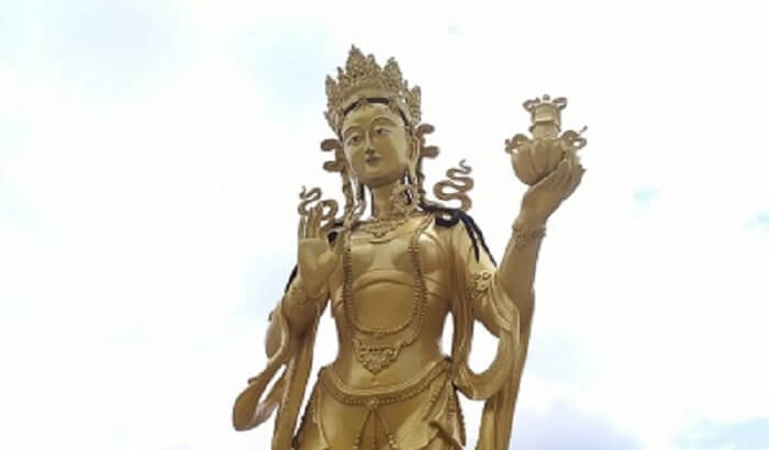 witness the wonders of Bhutan