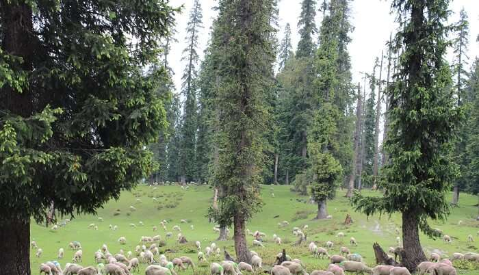 unexplored place in Kashmir