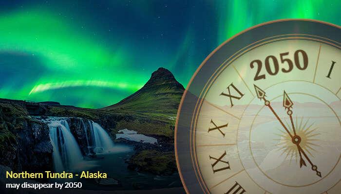 Northern Tundra - Alaska