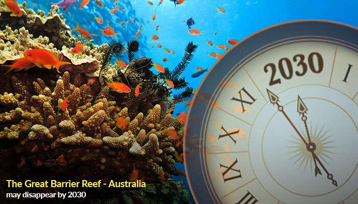 The Great Barrier Reef - Australia