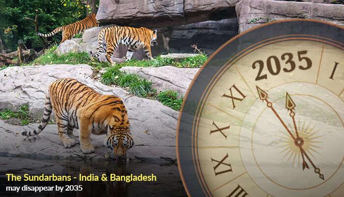 The Sundarbans - India & Bangladesh