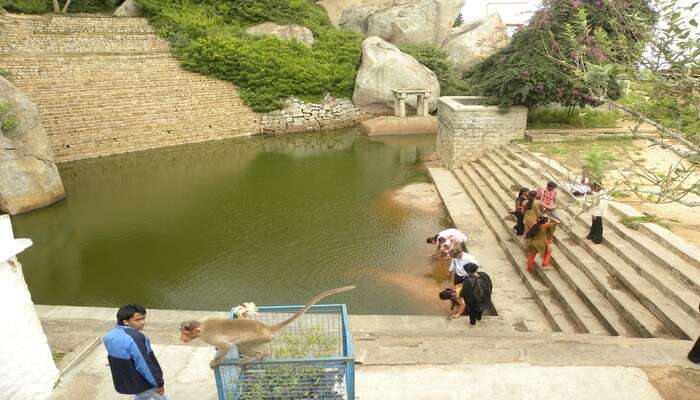 Best Things To Do In Tumkur