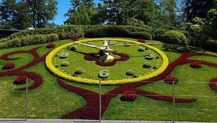 beautiful garden in the city