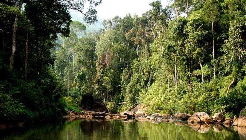 Makandawa Forest Reserve