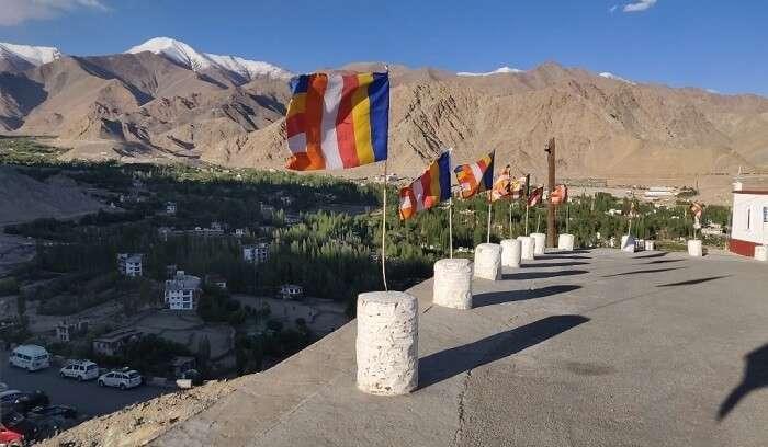 scenic around shanti stupa