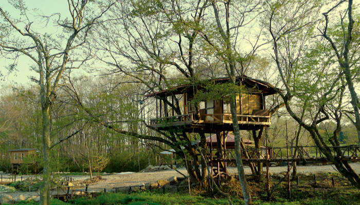 Treehouse Village Odagiri Garden