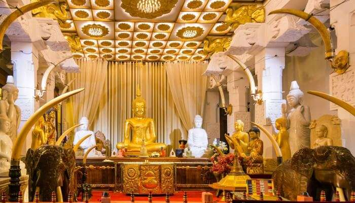 Things To Do In Moratuwa For A Divine