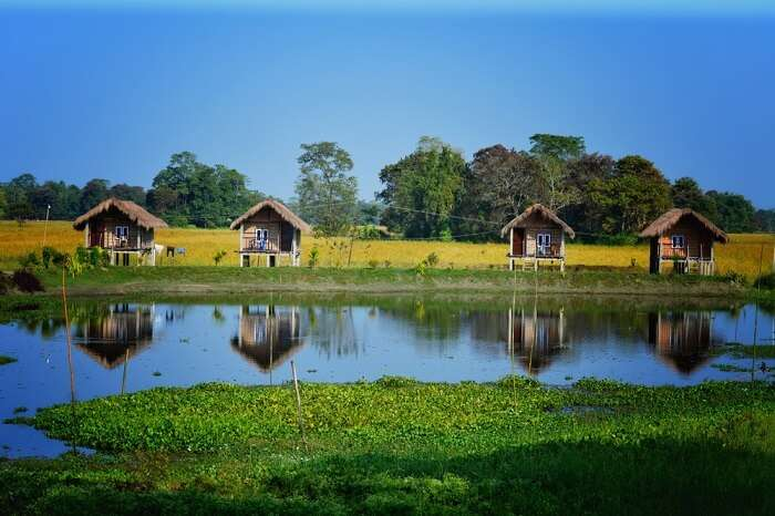 distant view of the clean and green majuli island