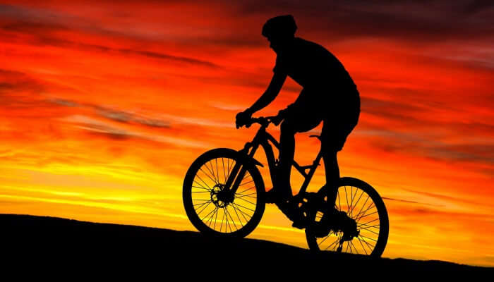 Biking Enthusiasts