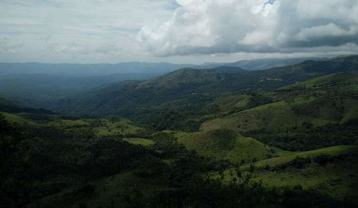 view of the misty hills in chikmagalur