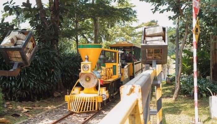 Enjoy A Toy Train Ride