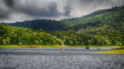 Beauty Of Thekkady