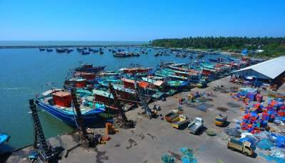 Fish Harbour