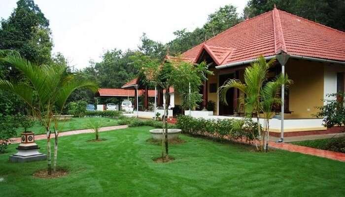 Homestay Amidst Coffee Estates
