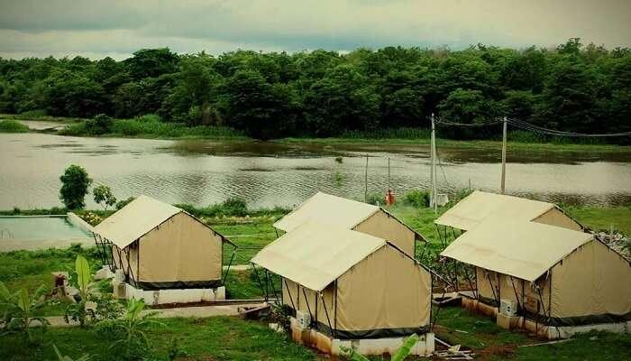 Homestay Near Kali River