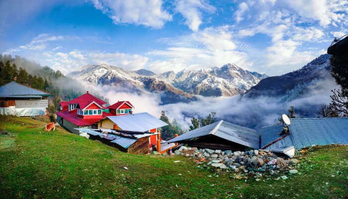 Homestays In Dharamshala cover