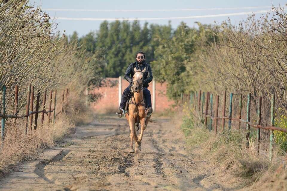 man doing horse riding