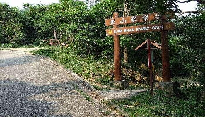 Kam Shan Country Park in Hong Kong