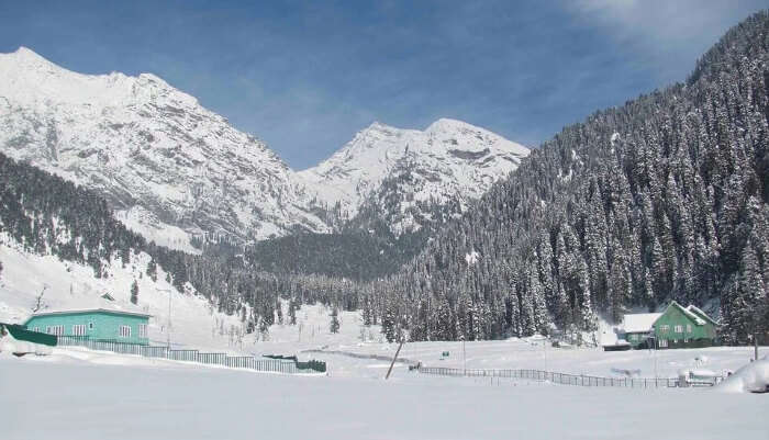 Pahalgam In Winter cover