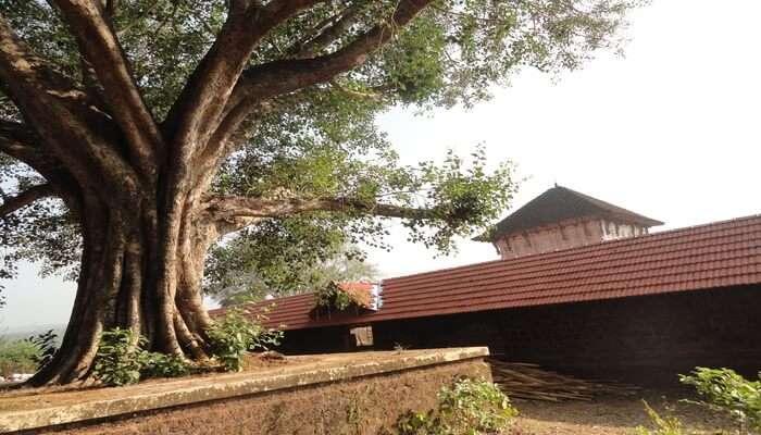 Panniyur Sri Varahamurthy Temple In Kumbidi