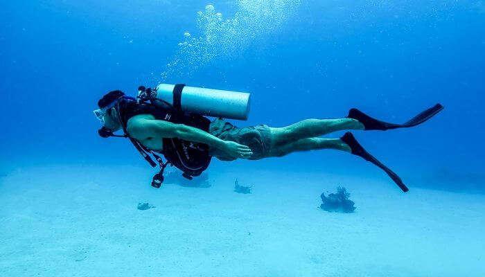 Best Scuba Diving in Chennai