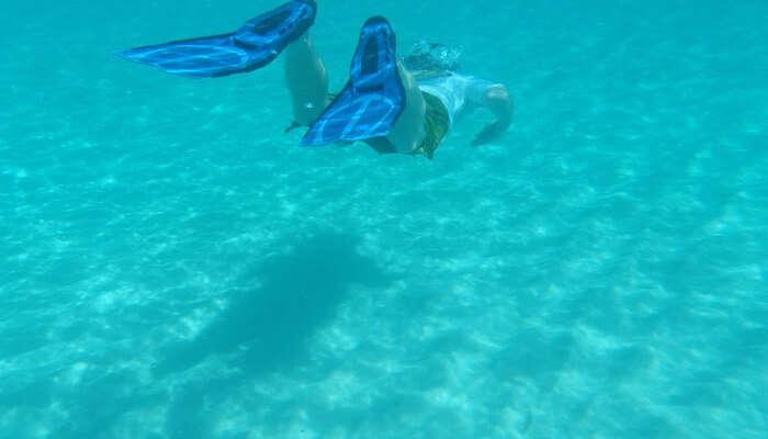 Enjoy Underwater Life