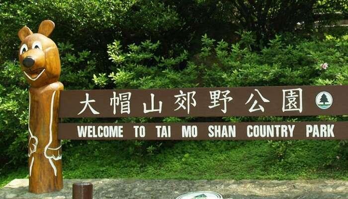 Tai Mo Shan Country Park