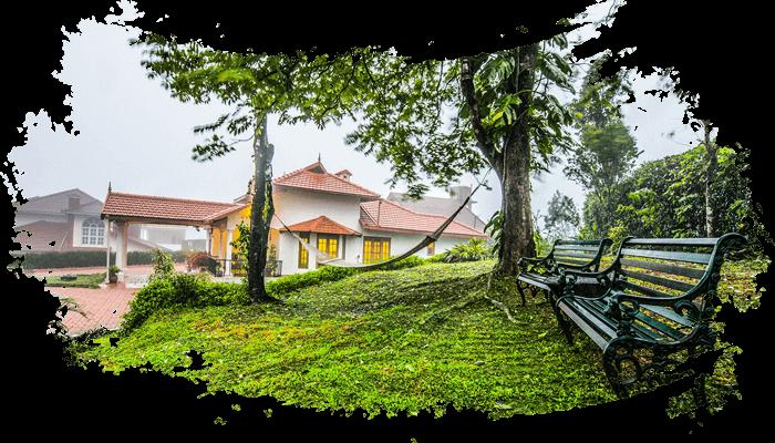 Greenery Near Homestay