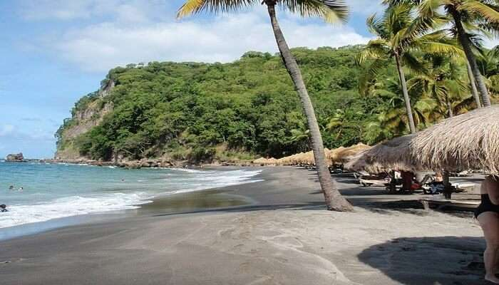 Anse Chastanet In St. Lucia