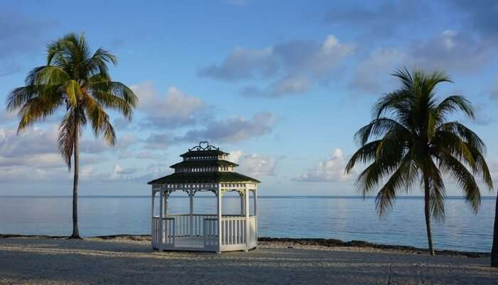 Visit the beautiful Cuba